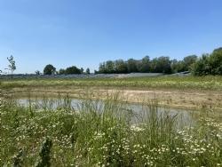 Natuurinclusief zonnepark Klarenbeek groot succes