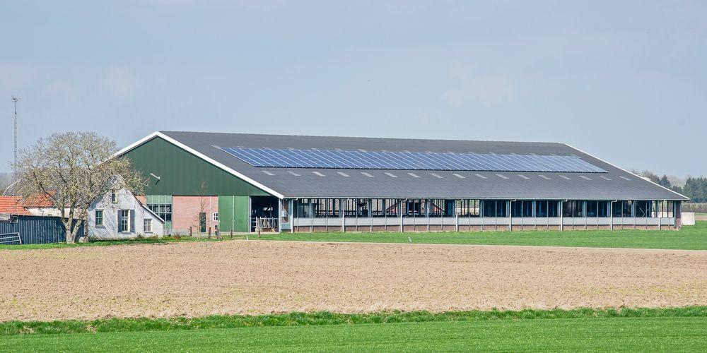 Bijna helft boeren wekt eigen energie op